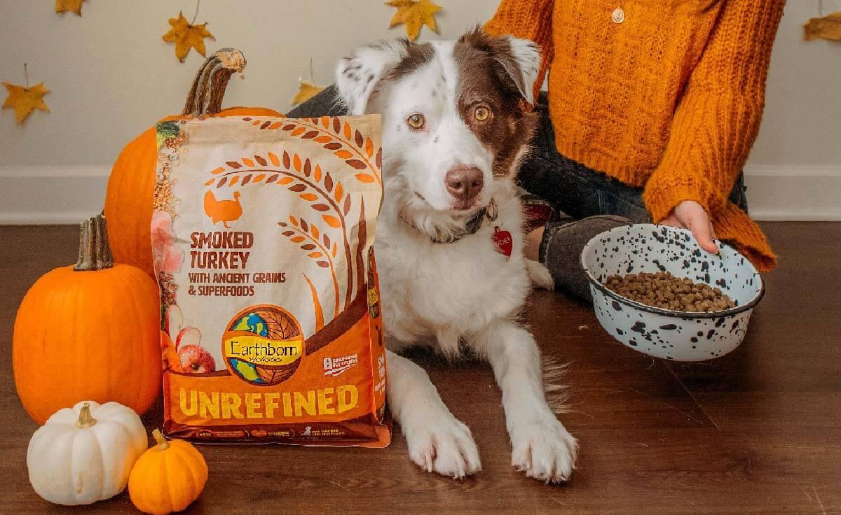 Dog Food with Pumpkin