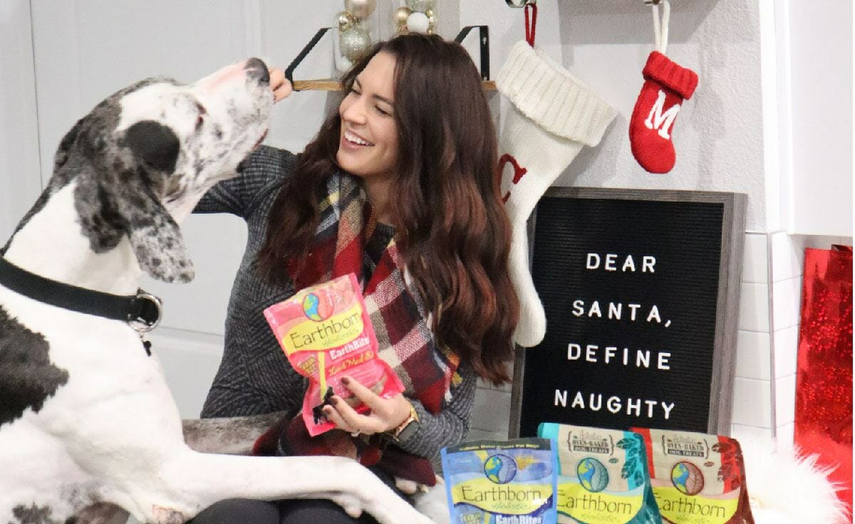 Woman feeding her great dane Earthborn Holistic EarthBites treats with Christmas decorations in the background