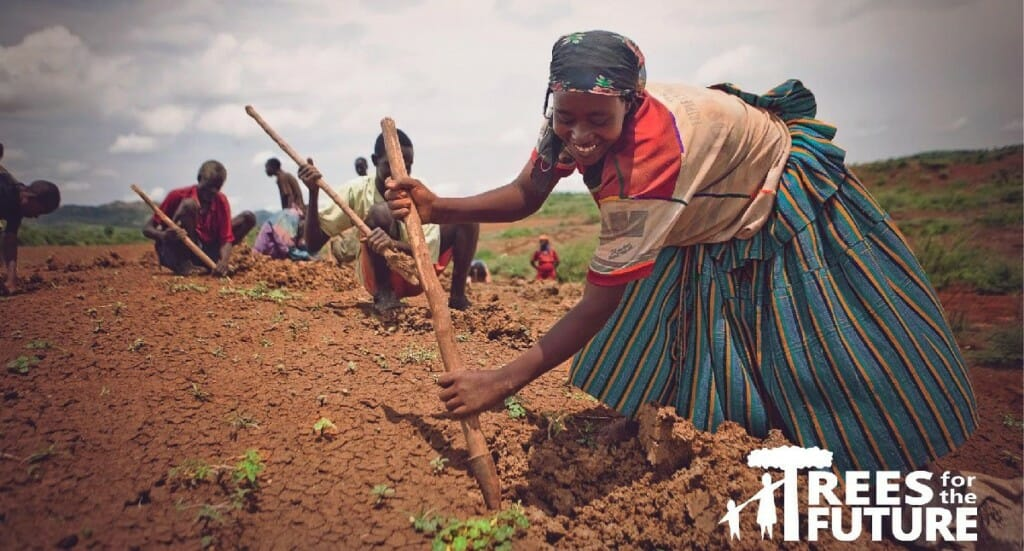 A woman works in a field planting trees