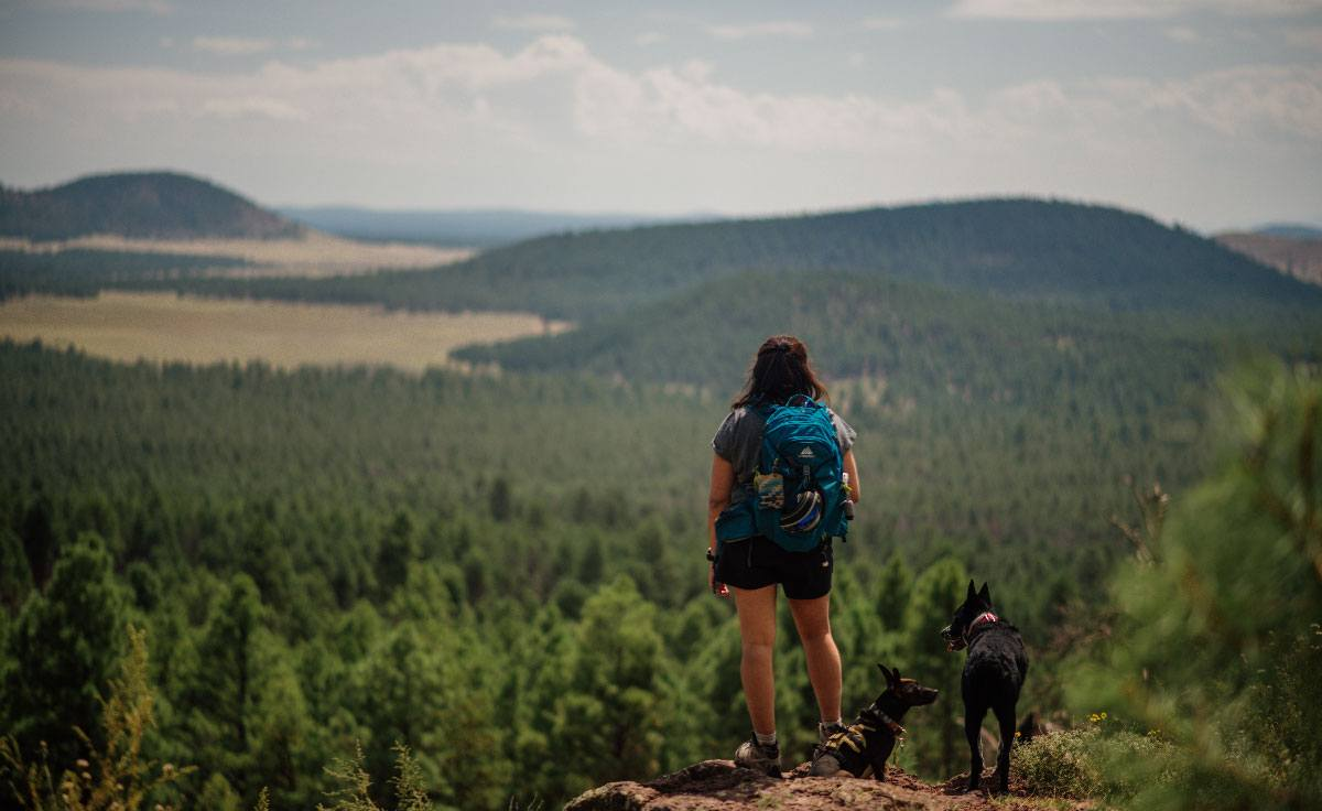 A woman stands on a summit in Arizona with her two dogs