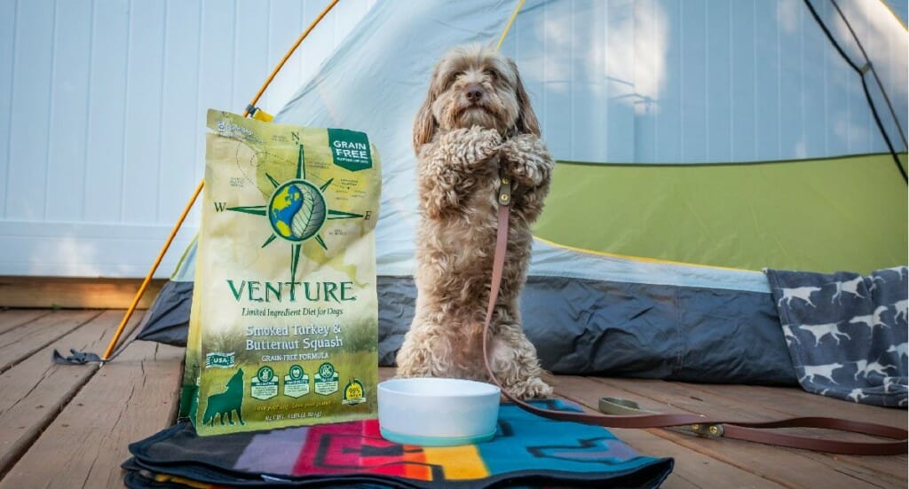 "A small dog ""begs"" his owner for Venture Smoked Turkey dog food while sitting in front of a backyard tent"