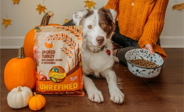 The Ultimate Earthborn Pumpkin Product Roundup