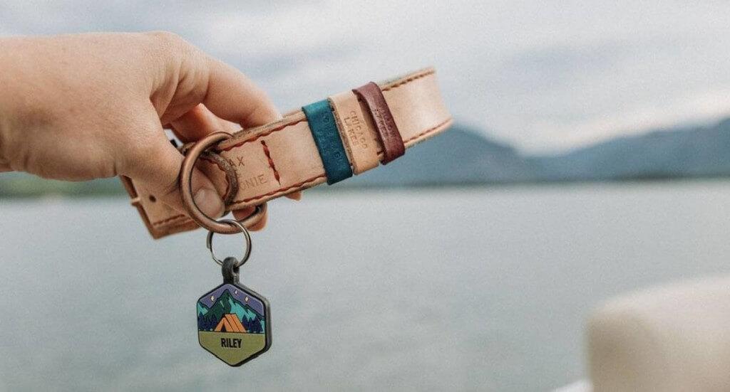 A hand holds a Jax & Moonie dog collar with custom tags
