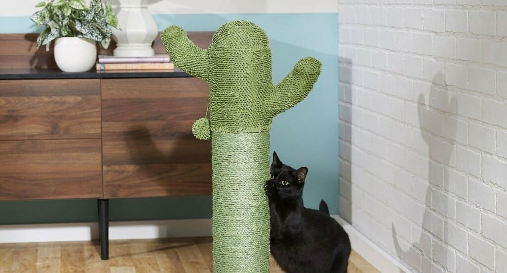 A cat scratching on a FRISCO Cactus Scratching Post