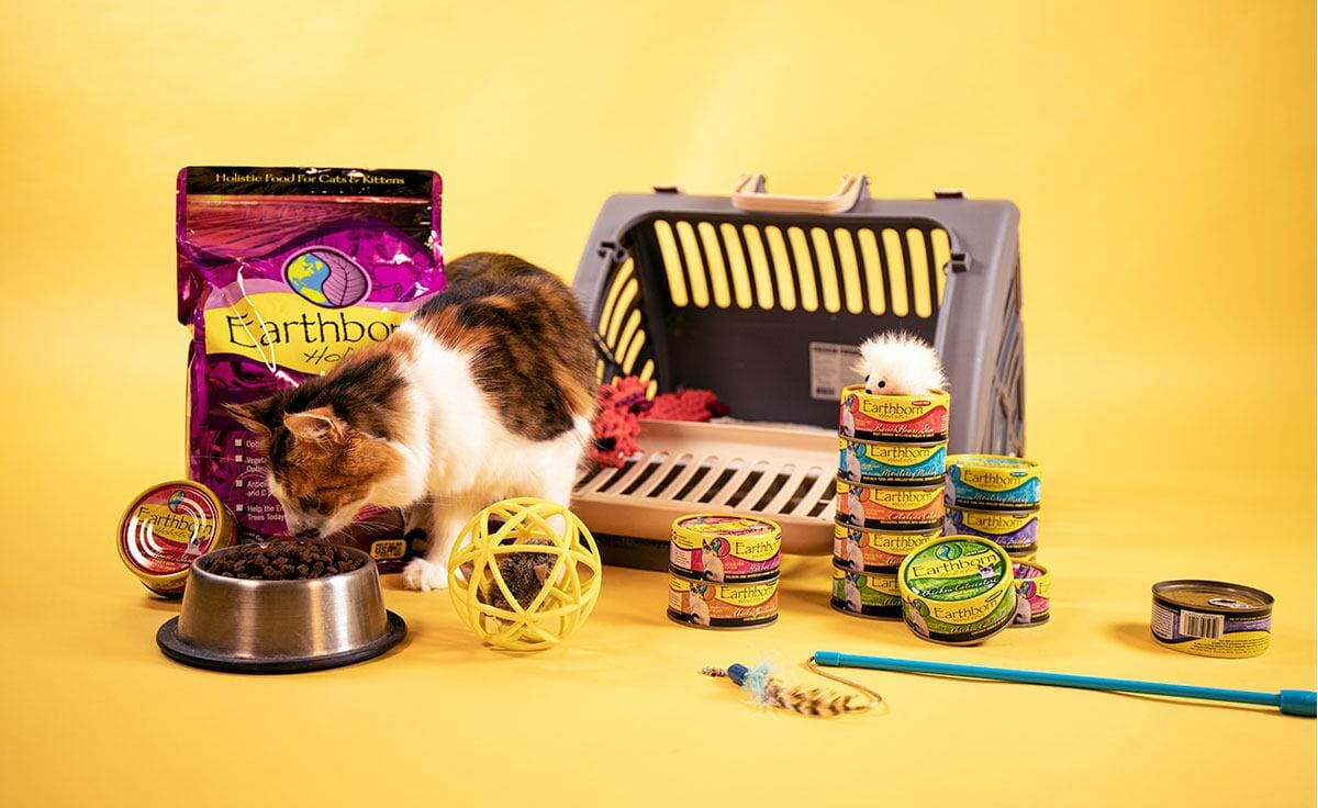 A calico kitten with Earthborn Holistic cat food, cat toys, and a cat carrier