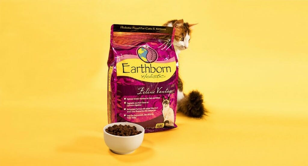 A calico kitten sits behind a bag of Earthborn Holistic Feline Vantage kitten food while a bowl of kibble sits in front