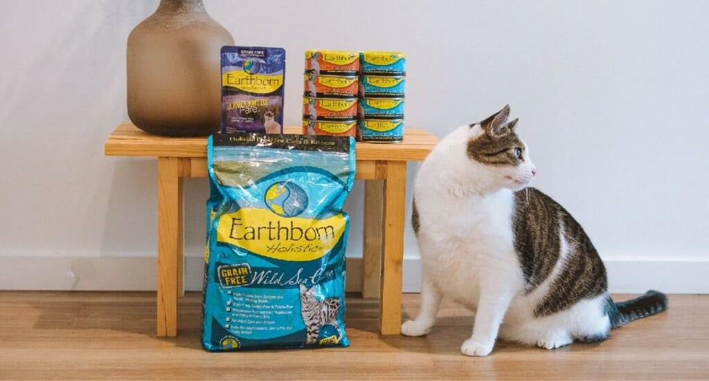 A black and white cat sitting in a front of a table with Earthborn Holistic cat food surrounding the table