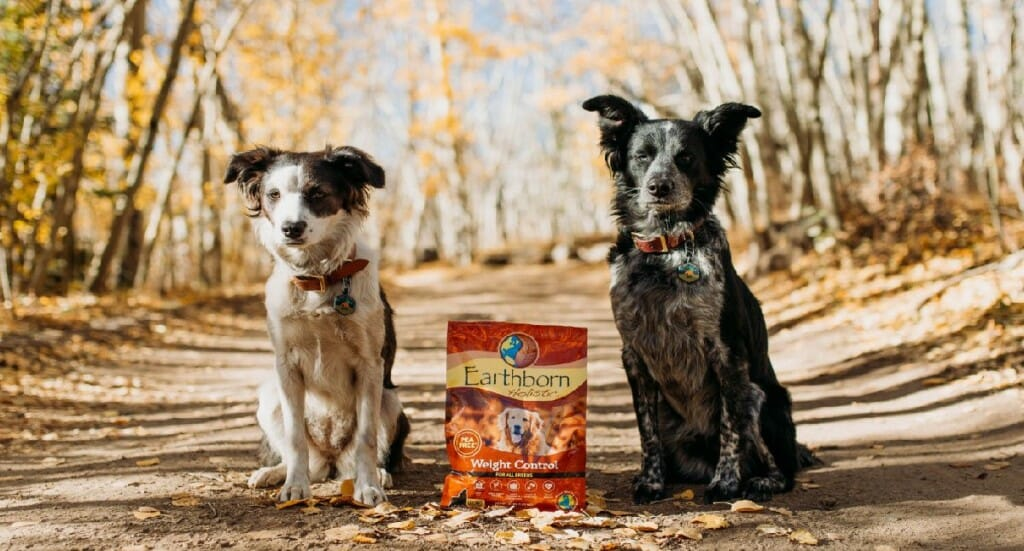 A bag of Earthborn Holistic Weight Control dog food sits between a small white and black dog and a small black and gray dog
