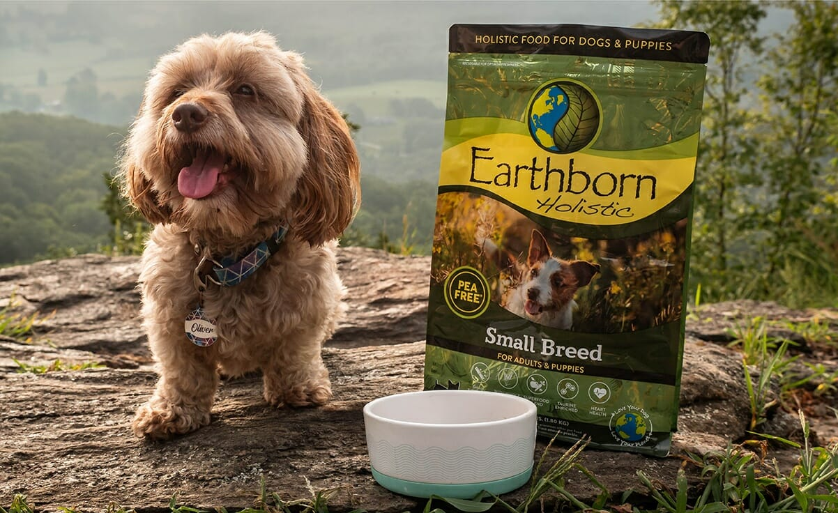 A dog sits next to Earthborn Holistic Small Breed dog food and a dog bowl with mountain scenery in the background