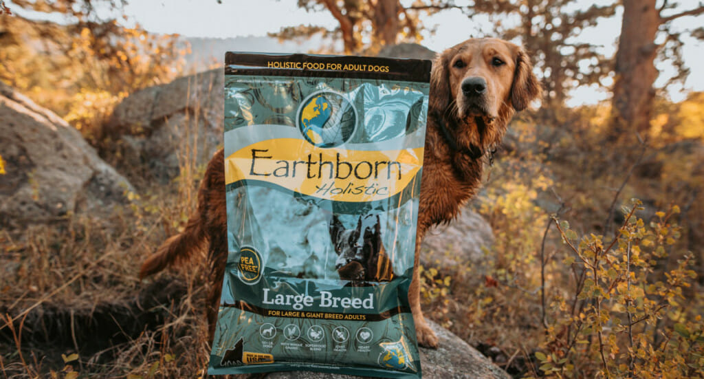 A bag of Earthborn Holistic Large Breed dog food sits in front of a Golden Retriever dog outside