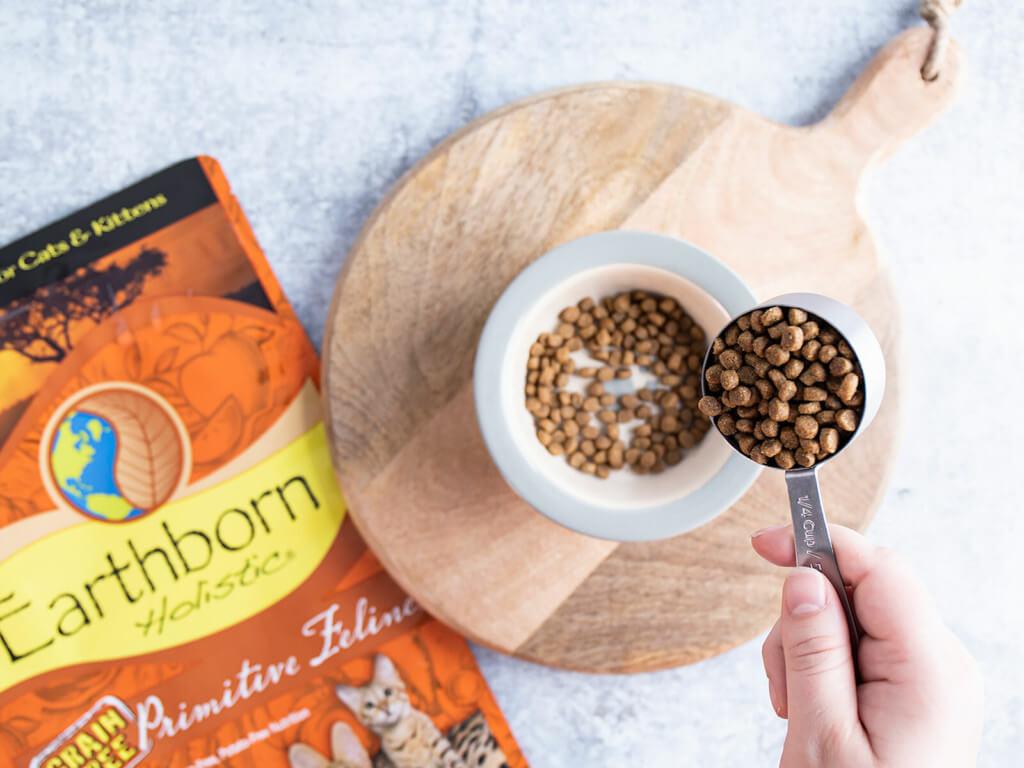 Bowl of Earthborn Holistic Primitive Feline cat food