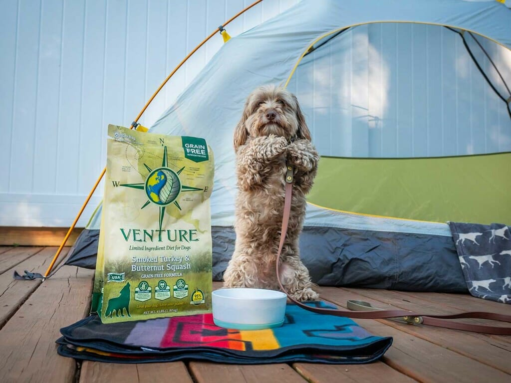Small dog with a leash standing up next to a bowl, tent, and bag of Earthborn Holistic Venture dog food