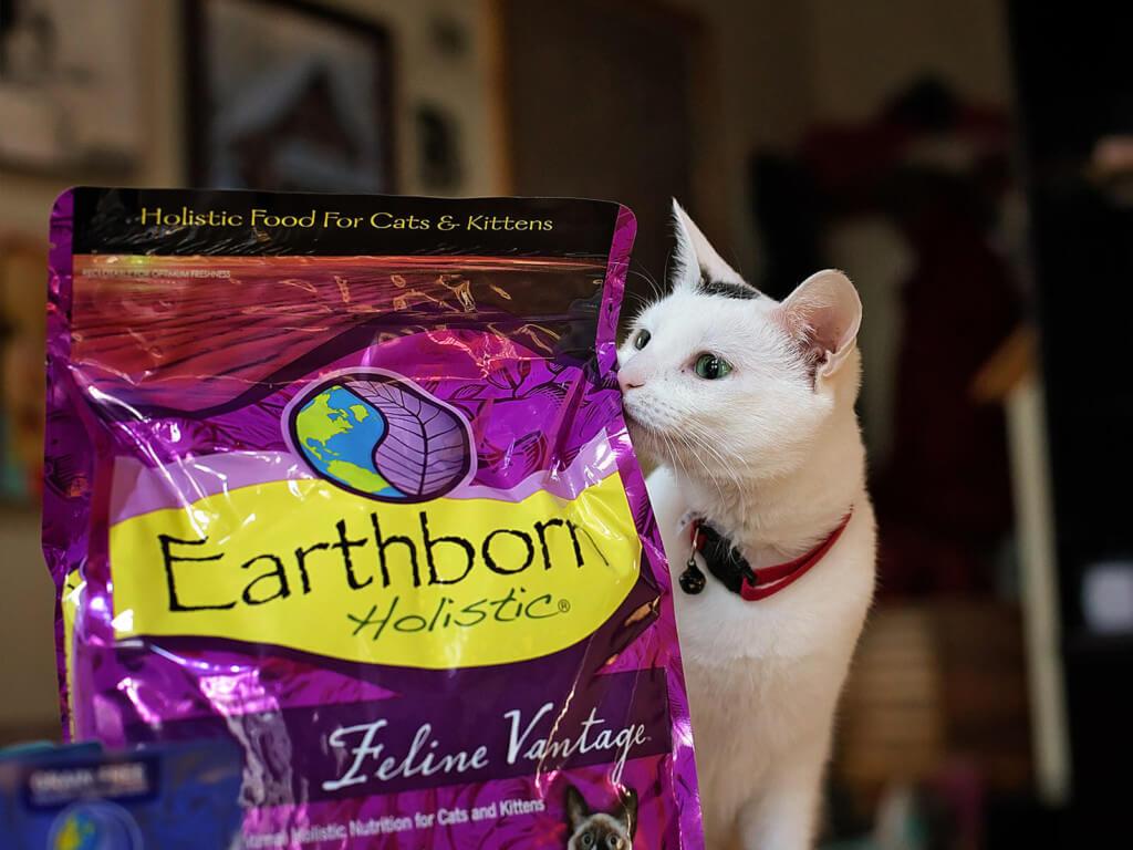Cat sniffing a bag of Earthborn Holistic Feline Vantage cat food