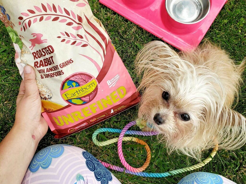Puppy looking up at owner beside a bag of Earthborn Holistic Unrefined Roasted Rabbit with Ancient Grains and Superfoods dog food