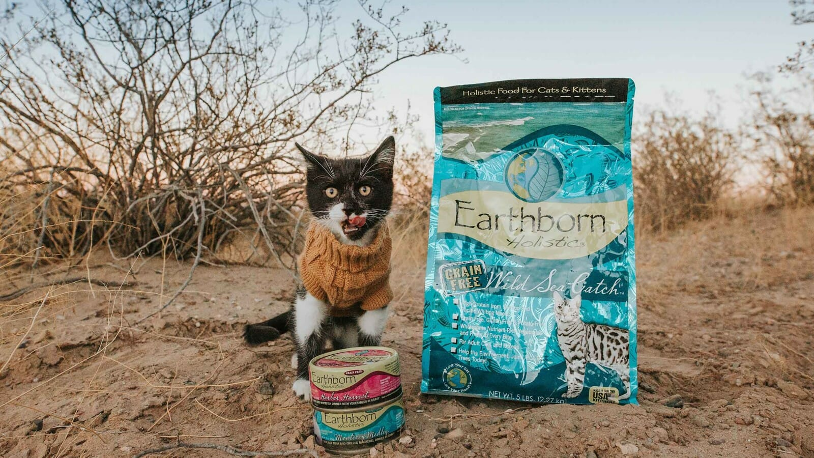 Small cat beside a bag of Earthborn Holistic Wild Sea Catch cat food