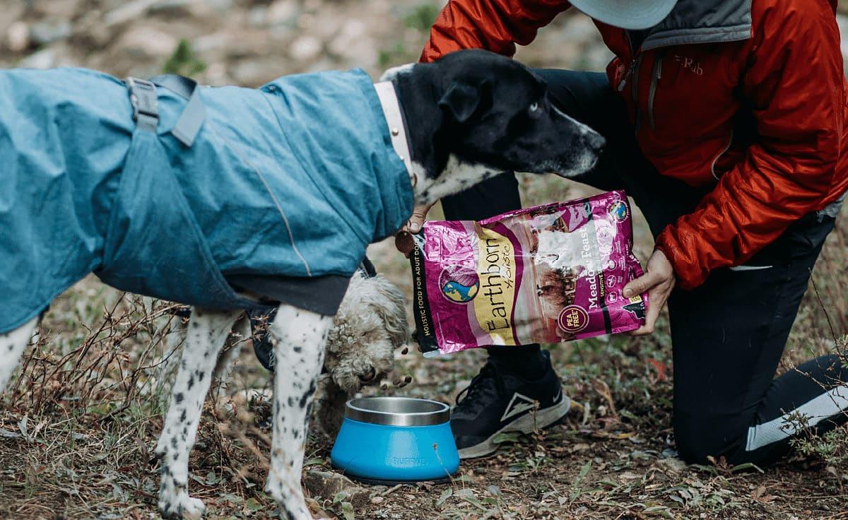 A dog sniffs a dog food bag as a man pours kibble into a bowl