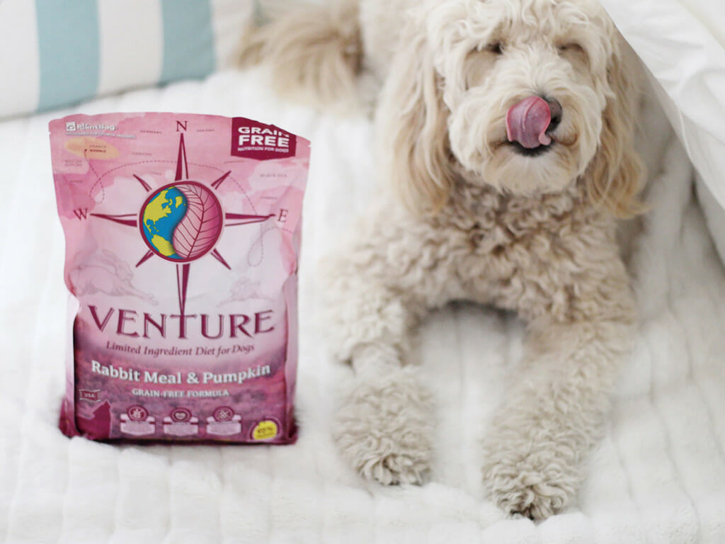 Bag of Venture Rabbit Meal & Pumpkin dog food next to a smiling dog