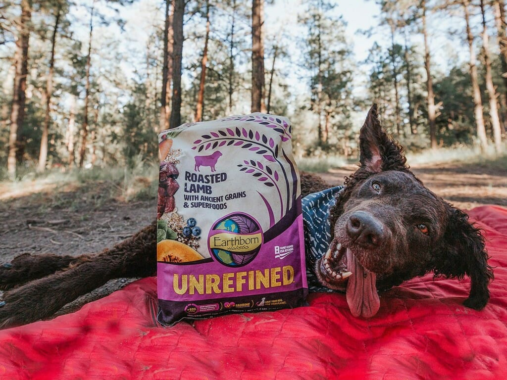 Dog smiling and laying next to a bag of Earthborn Holistic Unrefined Roasted Lamb with Ancient Grains and Superfoods dog food