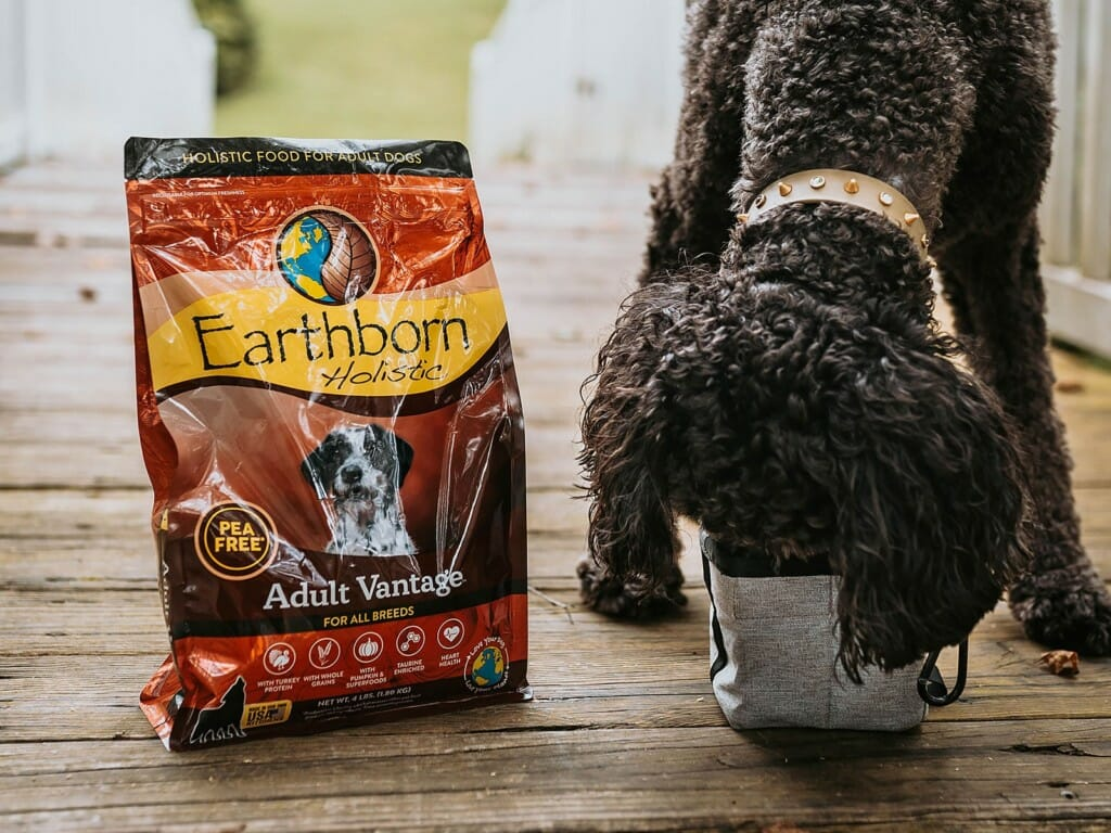 Dog eating from a bowl of Earthborn Holistic Adult Vantage dog food