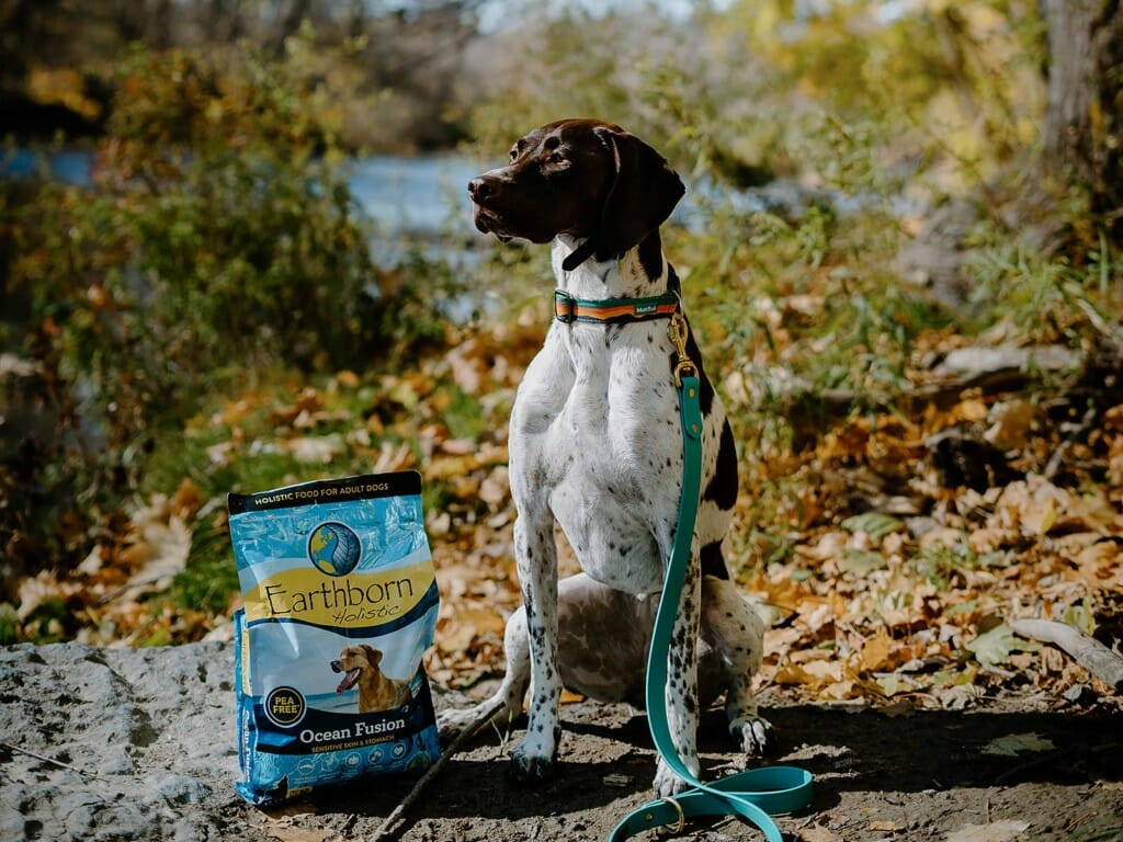 Dog standing in nature trail by a bag of Earthborn Holistic Ocean Fusion dog food