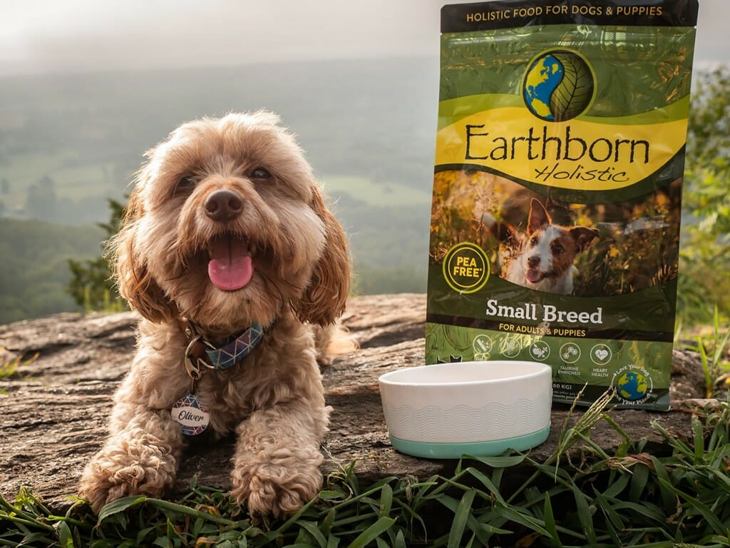 Smiling dog next to a bag of Earthborn Holistic small breed dog food
