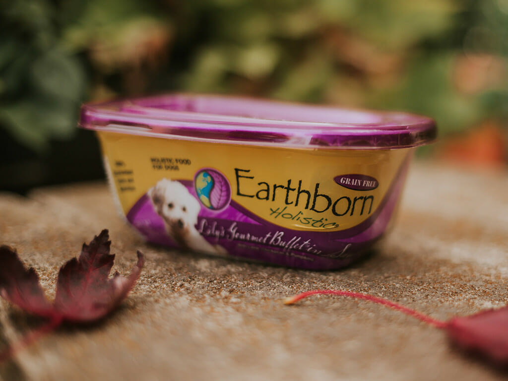 Tub of Earthborn Holistic Lily's Gourmet Buffet in Sauce dog food beside autumn leaves