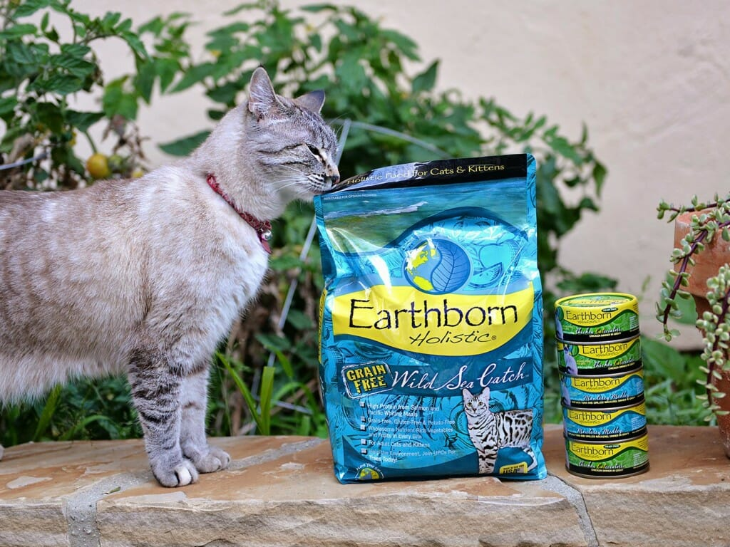 Cat sniffing a bag of Earthborn Holistic Wild Sea Catch cat food