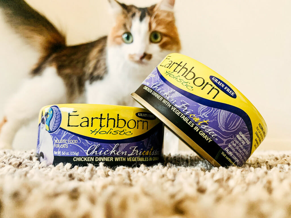 Cat peeking out over two cans of Earthborn Holistic Chicken Fricatssee cat food