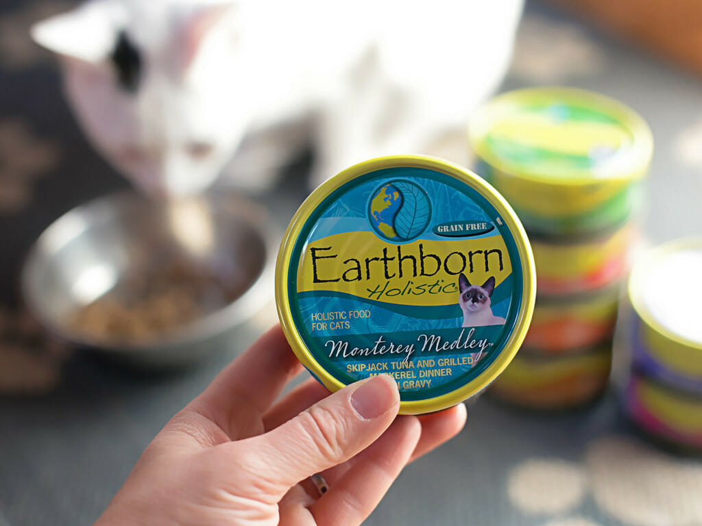 Person holding up a can of Earthborn Holistic Monterey Medley cat food
