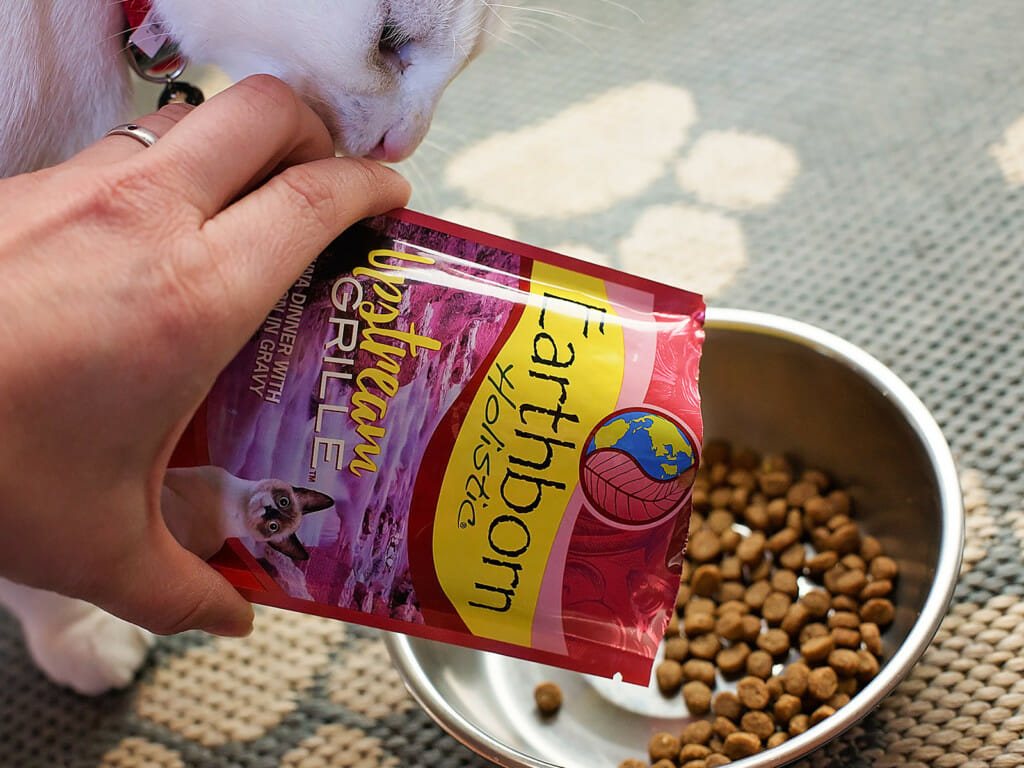 Person pouring a bag of Earthborn Holistic Upstream Grille cat food into a bowl