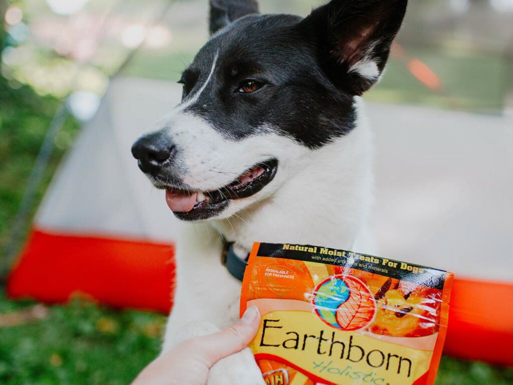 Smiling dog holding on to a bag of Earthborn Holistic EarthBites Cheese Flavor