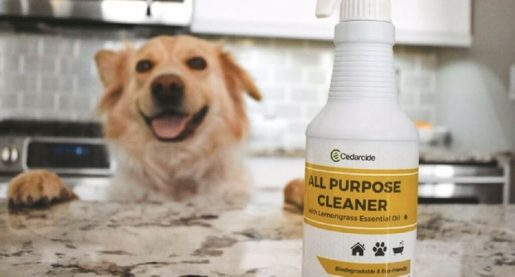 A bottle of Cedarcide All Purpose Cleaner sitting on a kitchen counter with a dog in the background
