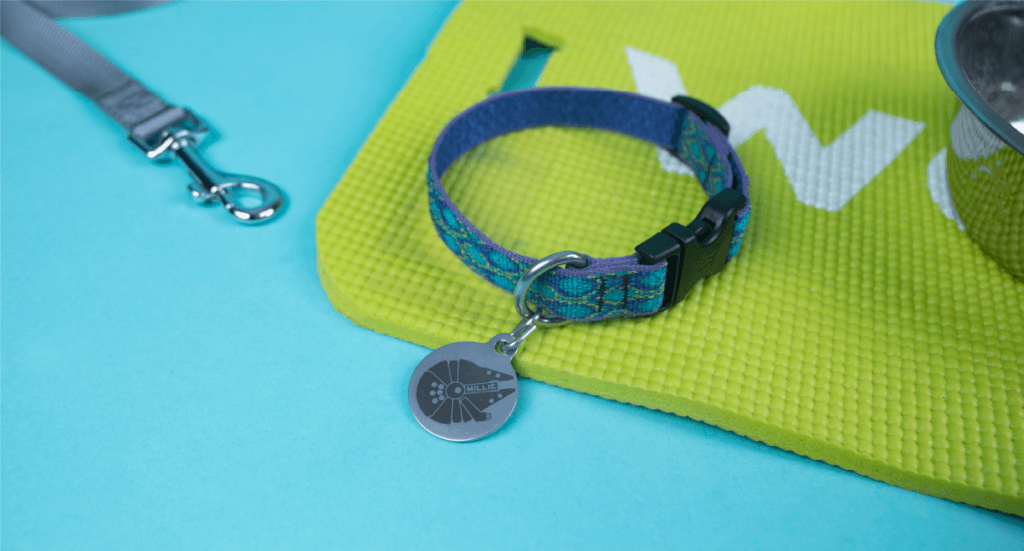 A closeup of a custom dog collar tag