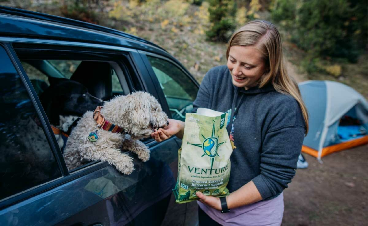 A dog leans out a car window while a woman feeds her Venture dog food