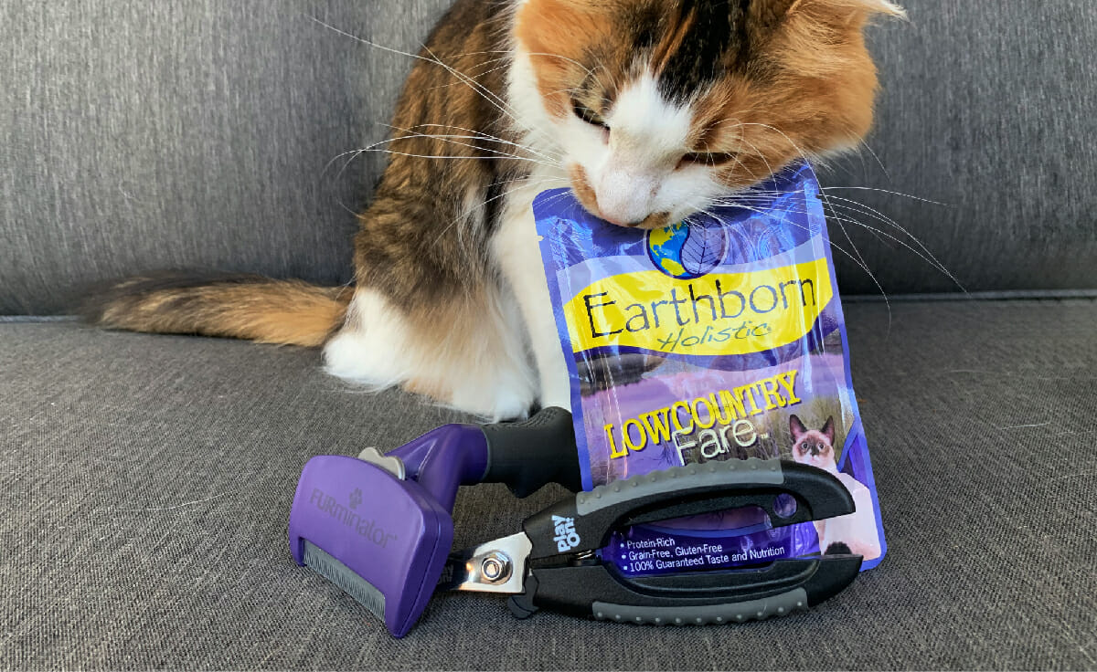 A cat stands behind a FURminator and nail clippers, chewing on an Earthborn Holistic wet cat food pouch