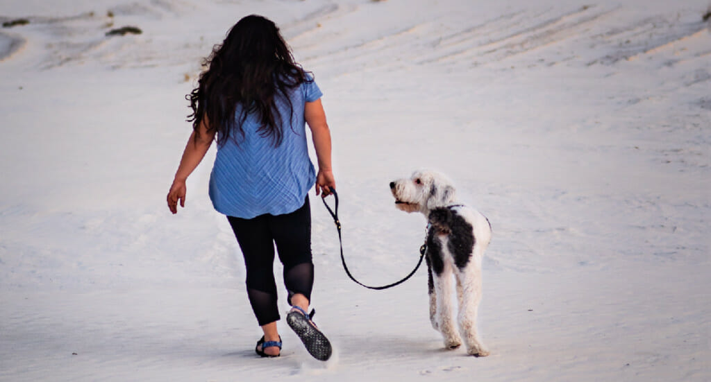 A woman walks with her dog across a white sand duneog