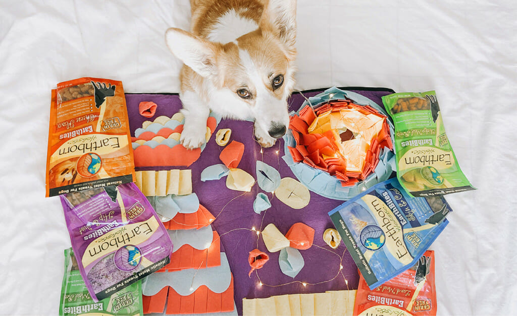 A dog lays on a snuffle mat with Earthborn Holistic dog treats