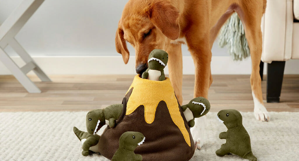 A dog pulls mini toys out of a Frisco volcano dog toy