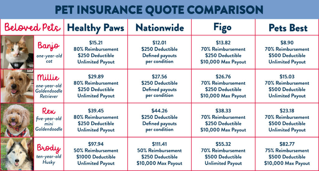 A chart comparing four different pet insurance companies and their monthly premiums for four of our office pets