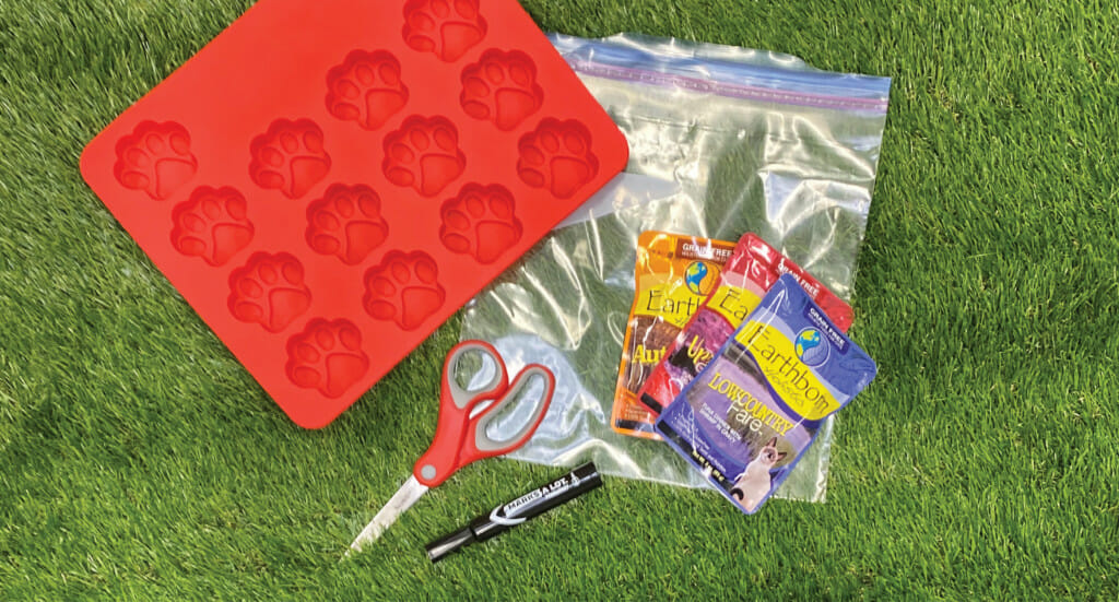 An overhead shot of a silicone tray, ziplock bag, permanent marker, scissors, and Earthborn Holistic cat food