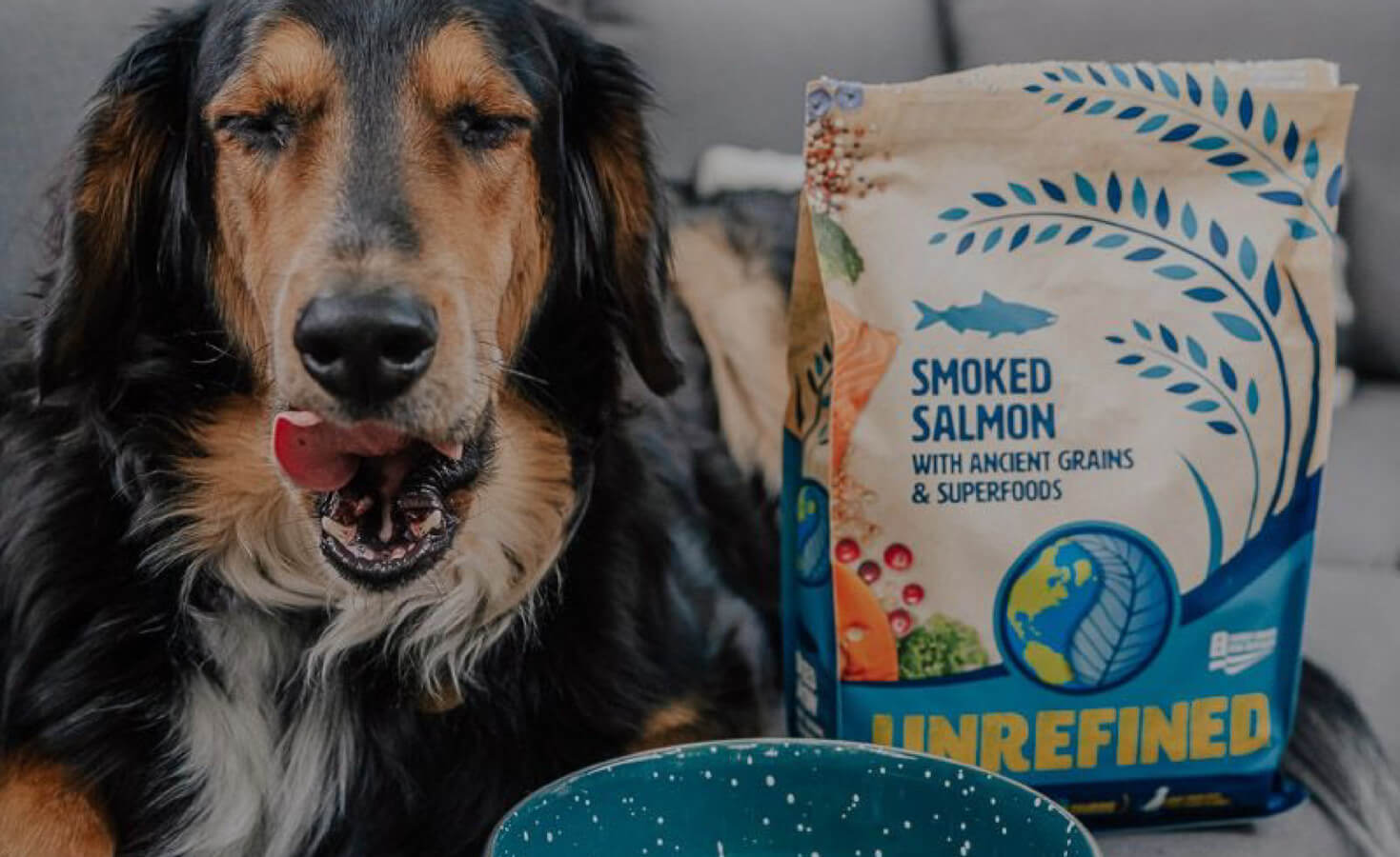 A dog licks his lips while laying next to a bag of UNREFINED dog food and a full bowl of food