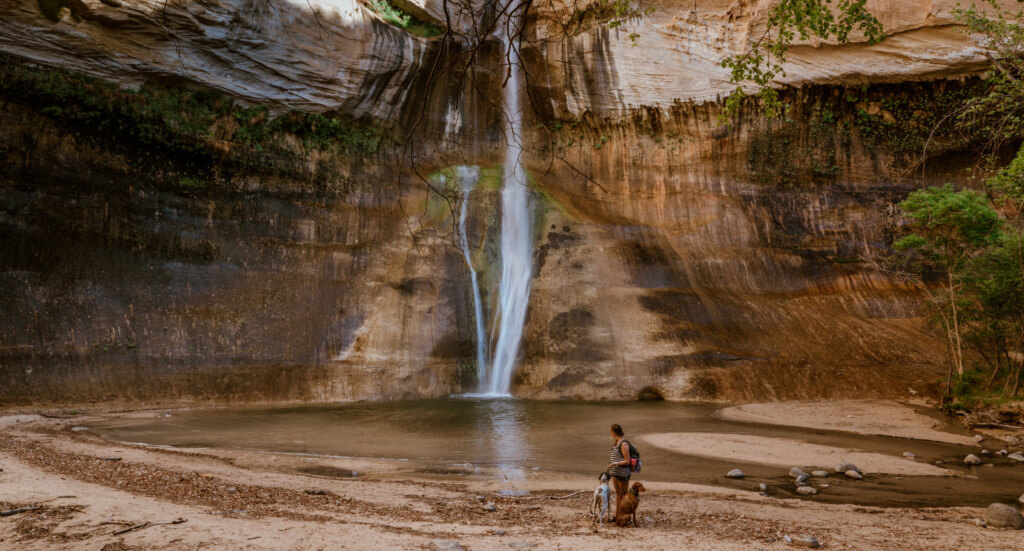 A human and their dog stand at the bottom of Lower Calf Creek Falls, Utah