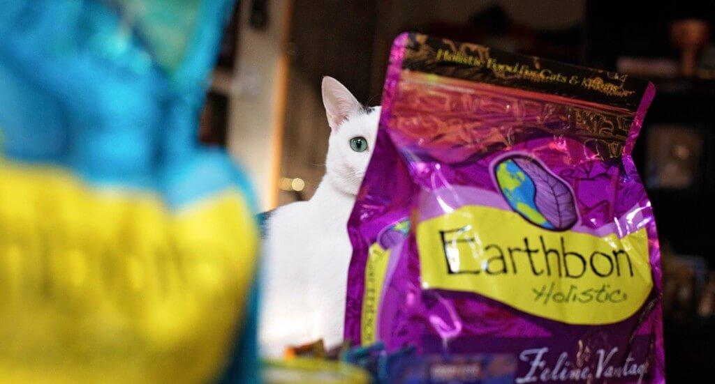 A cat peeks between two bags of cat food
